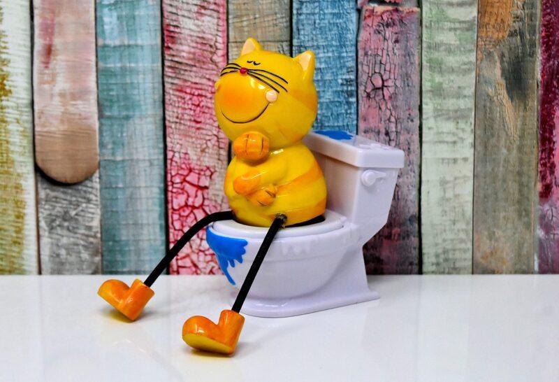 トイレ掃除は毎日したほうがいい?みんなはどれくらいの頻度でしている?